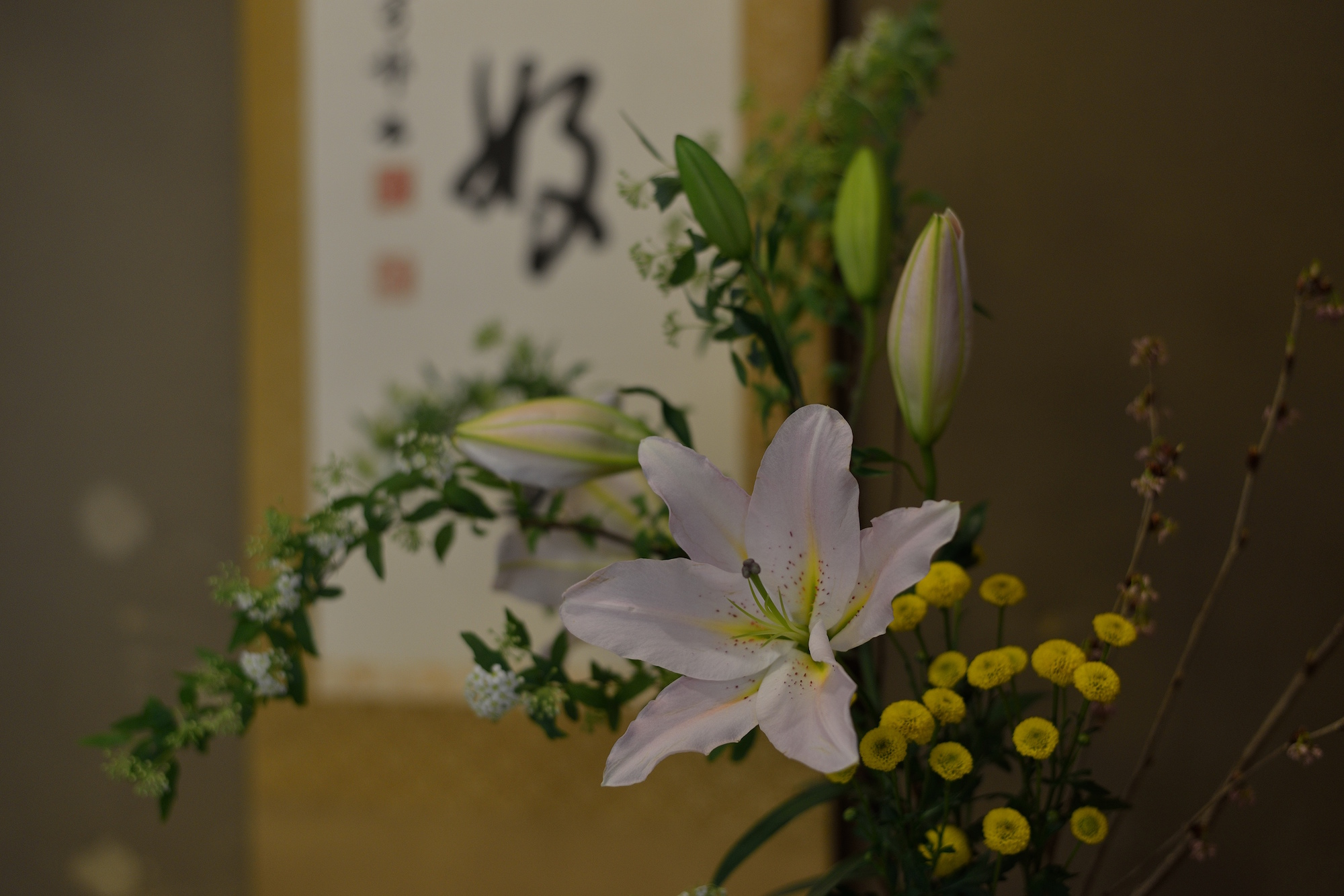 Toriyasa interior